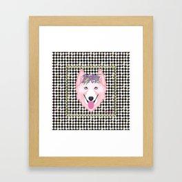 Harlequin Husky Framed Art Print