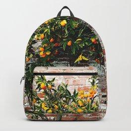 Citrus Brick Wall Backpack