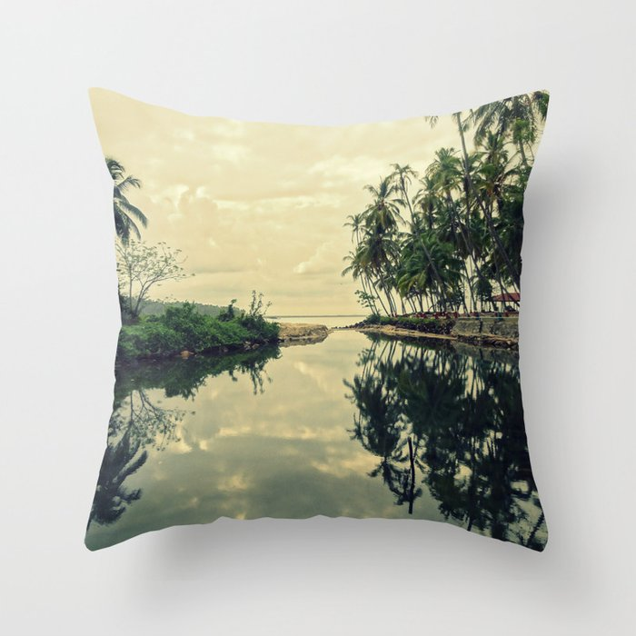 Mood for Reflection Throw Pillow
