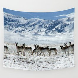 Pronghorns in the Basin Wall Tapestry