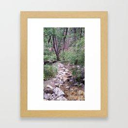 Mt. Lemmon's Wonders Framed Art Print