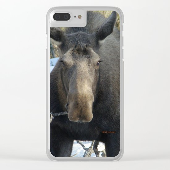 Moose Munching Poplar Lunch Clear iPhone Case
