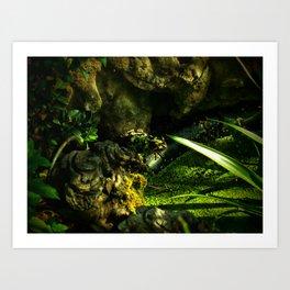 Cammo Frog Art Print