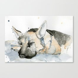 Sleeping puppy Canvas Print