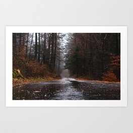 The Forest Road Art Print