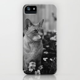 cats and flowers iPhone Case