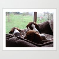 puppies Art Prints featuring Dachshund Puppies by Canis Picta