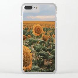 denver sunflower field Clear iPhone Case
