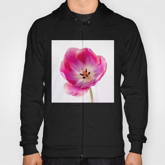 Pink Tulip Hoody