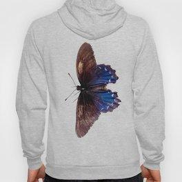 Resting Butterfly Hoody
