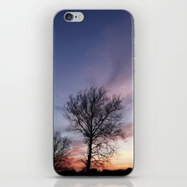 Shoot the Moon iPhone Skin
