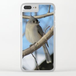 The Tufted Titmouse Clear iPhone Case