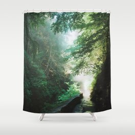 Into The Mist 1 Shower Curtain