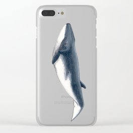 Bryde´s baby whale (Balaenoptera brydei) Clear iPhone Case