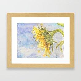 Helianthus annuus: Sunflower Abstraction Framed Art Print