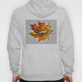 NYC autumn Hoody