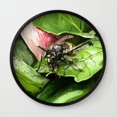 Wasp on flower16 Wall Clock