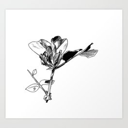 Daily Petals Art Print