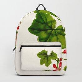 Joy Leaved Geranium Vintage Scientific Botanical Flower Illustration Hand Drawn Art Backpack