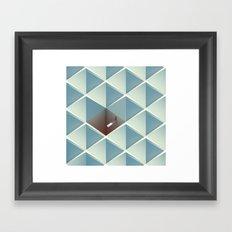 Physica Obscura Framed Art Print