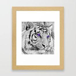 Violet Eyes Framed Art Print