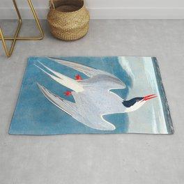 Arctic Tern James Audubon Vintage Scientific Illustration American Birds Rug