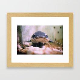 BAGRE Framed Art Print