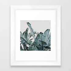 Plumage Framed Art Print