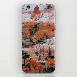 Bryce Canyon LH3 iPhone Skin