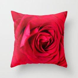 Red Rose Close-up #decor #society6 #buyart Throw Pillow