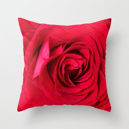 Red Rose Close-up #decor #society6 #buyart Throw Pillow
