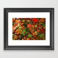Lotta Leaves Framed Art Print