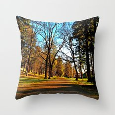 South Park pathway Throw Pillow