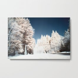 Near Shannon Falls in Infrared Metal Print