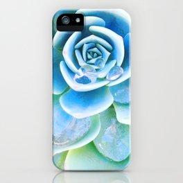 Succulent Tears iPhone Case