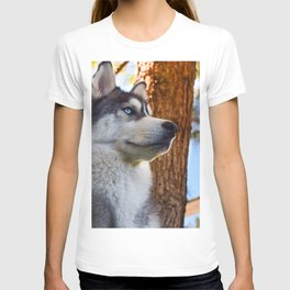 The Stare T-shirt