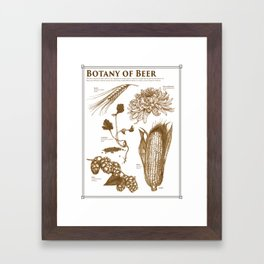 Botany of Beer Framed Art Print