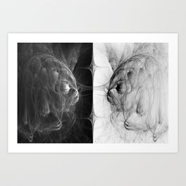 Reflection In Duplicity Art Print