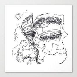 Starry Eyes Canvas Print