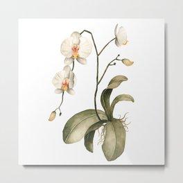 Watercolor Orchid Metal Print