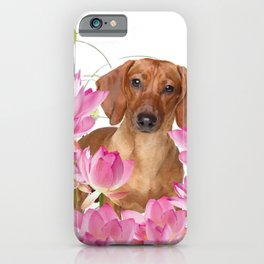 Dog in Field of Lotos Flower iPhone Case