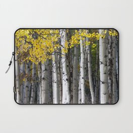 Yellow, Black, and White // Aspen Trees in Crested Butte Laptop Sleeve