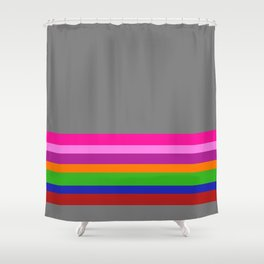 Solid Gray w/ Multicolor Divider Lines #1 - Abstract Art Illustration Shower Curtain