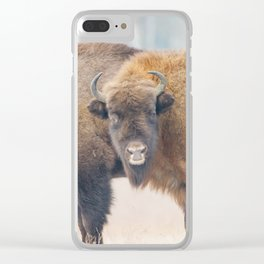 Copy-Paste Clear iPhone Case