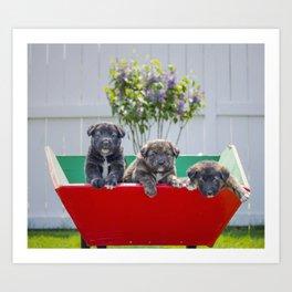 Three Pup-migos Art Print