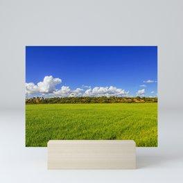 Rice Field II Mini Art Print