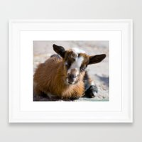 fig Framed Art Prints featuring Fig by 4 on the Floor
