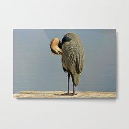 Heron Having a Bath II Metal Print
