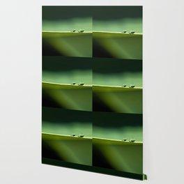 two water drops Wallpaper