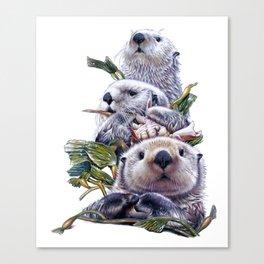 Sea Otter Trio Canvas Print